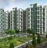 Picture 2 Bhk Flat Rent In Woodsville Spine Road Moshi...